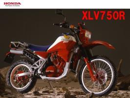 xlv750R.jpg