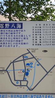 忍野八海地図