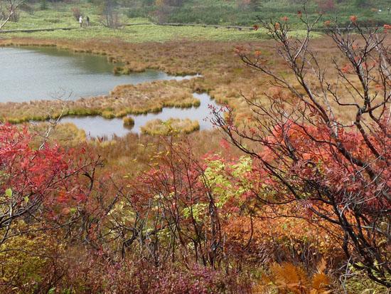 草津 弓池の紅葉