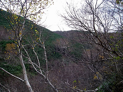 hitokoma2010-1021-1.jpg