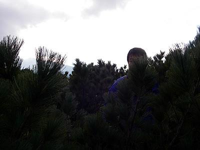 hitokoma2010-1023-7.jpg