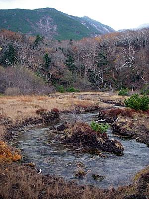 hitokoma2010-1029-3.jpg