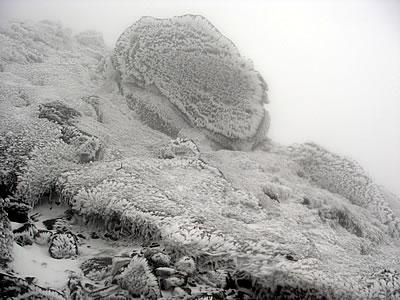 hitokoma2010-105-1.jpg