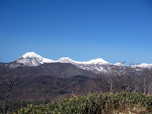 hitokoma2010-1121-1.jpg