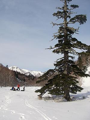 hitokoma2010-214-1.jpg