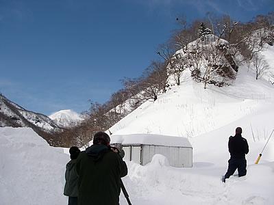 hitokoma2010-221-1.jpg