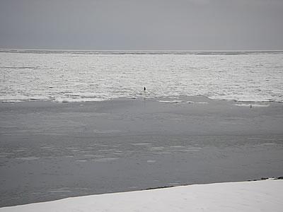 hitokoma2010-228-7.jpg