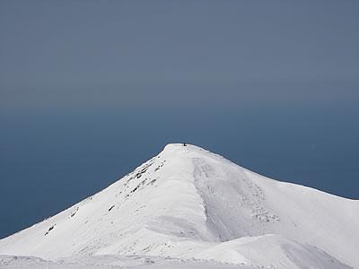 hitokoma2010-427-1.jpg