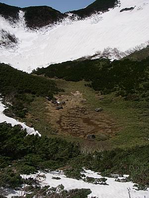 hitokoma2010-531-3.jpg