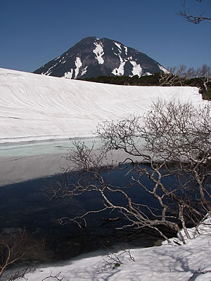 hitokoma2010-531-5.jpg
