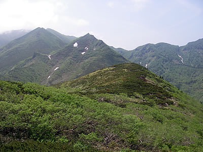 hitokoma2010-619-3.jpg