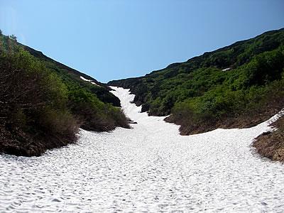 hitokoma2010-629-6.jpg