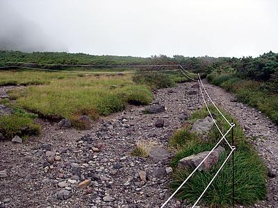 hitokoma2010-823-6.jpg