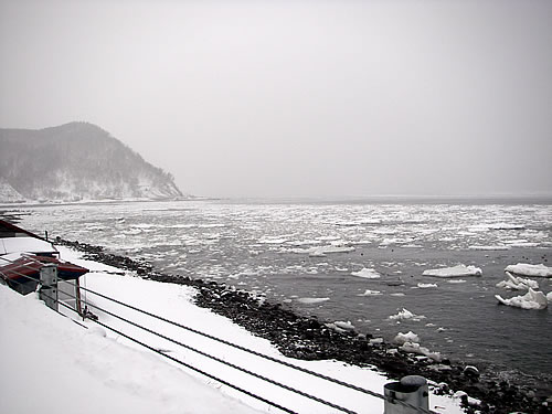 hitokoma2011-124.jpg