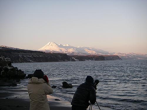 hitokoma2011-2711-8.jpg