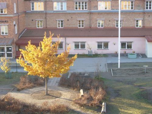 秋ですねえ