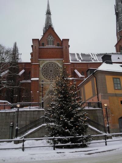 教会のツリー