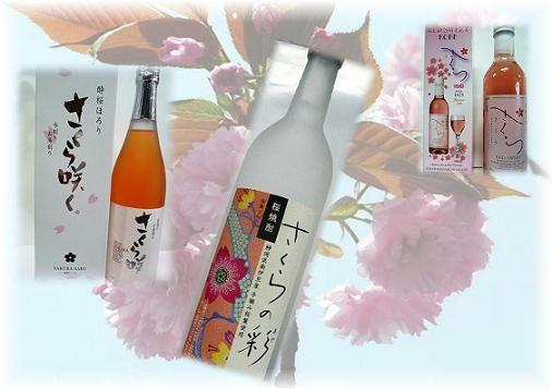 sakura花の競演