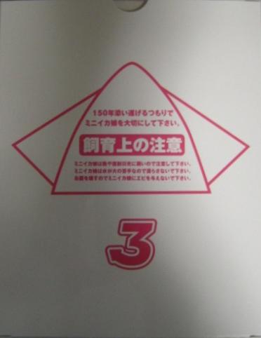 32i12.jpg