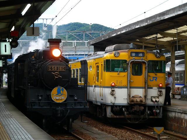 P1060130.jpg