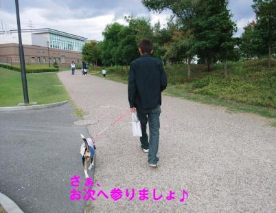 コピー ~ DSCF2668