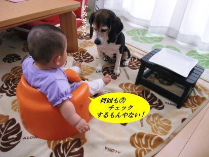 コピー ~ DSCF1093