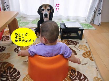 コピー ~ DSCF1089