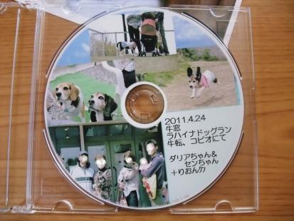 コピー ~ DSCF1312