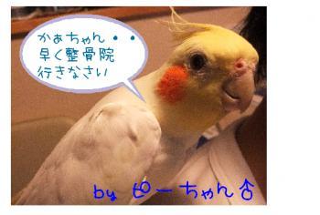 縺、縺カ繧・″繝斐・_convert_20110422015952