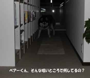 20091028_1.jpg
