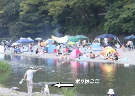 20110817_3.jpg