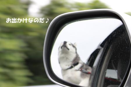 20110821_1.jpg