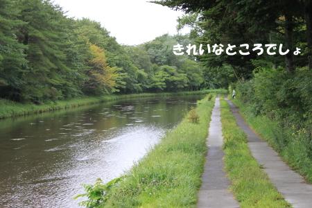 20110822_1.jpg