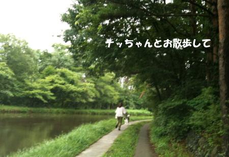 20110822_2.jpg