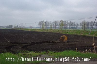 IMGP8048.jpg
