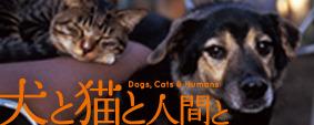 犬と猫と人間と.jpg