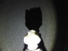 LEDあてて影の写真を撮るのって楽しい