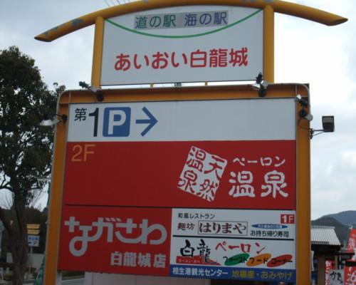 2010_01100133.jpg