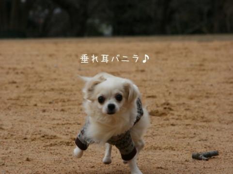 2010_02140004-001.jpg