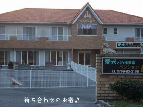 2010_03280224-001.jpg