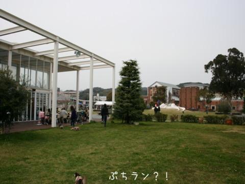 2010_03310396-001.jpg