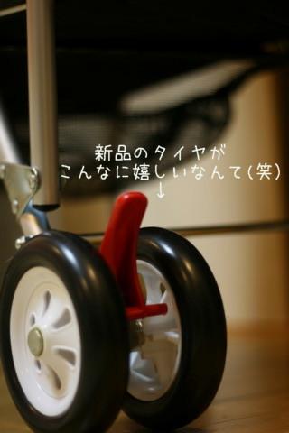 2010_03310492-001.jpg