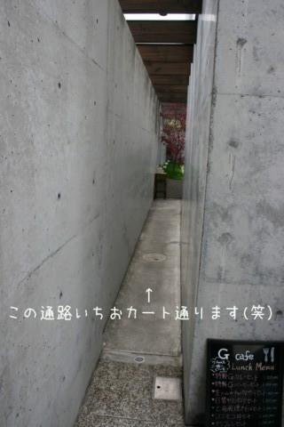 2010_04110004-001.jpg