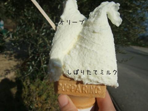 2010_04170093.jpg