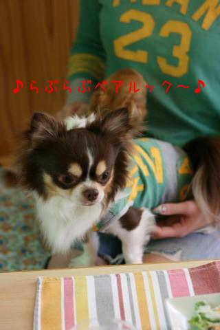 2010_05260021-001.jpg