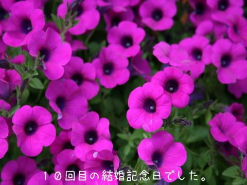 2010_06020225-001.jpg