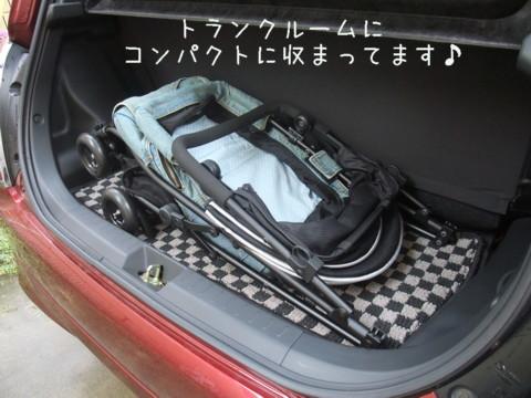 2010_07100003-001.jpg