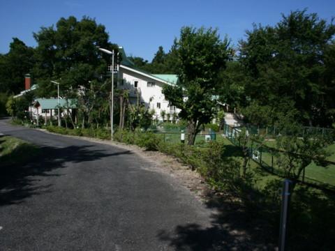 2010_07200264.jpg
