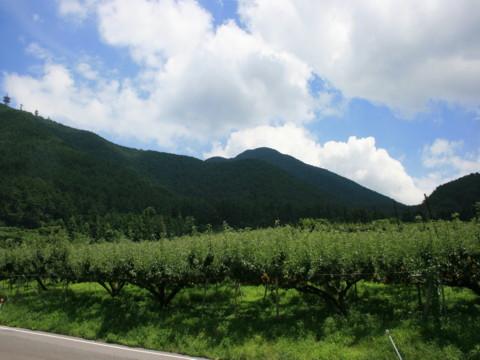 2010_07200522.jpg