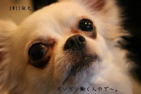 IMG_4663-001.jpg